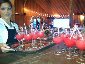 wedding reception at Stony Mountain Vineyard